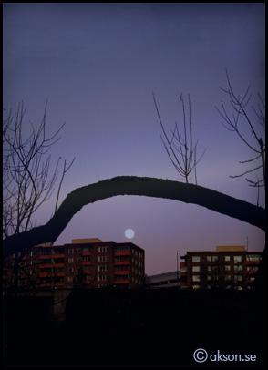 Månen iträdet