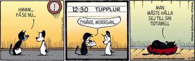 Morrgan -Tidtabell